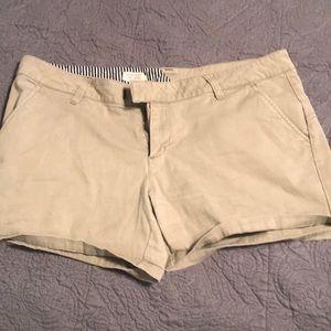 Size 11 Volcom shorts